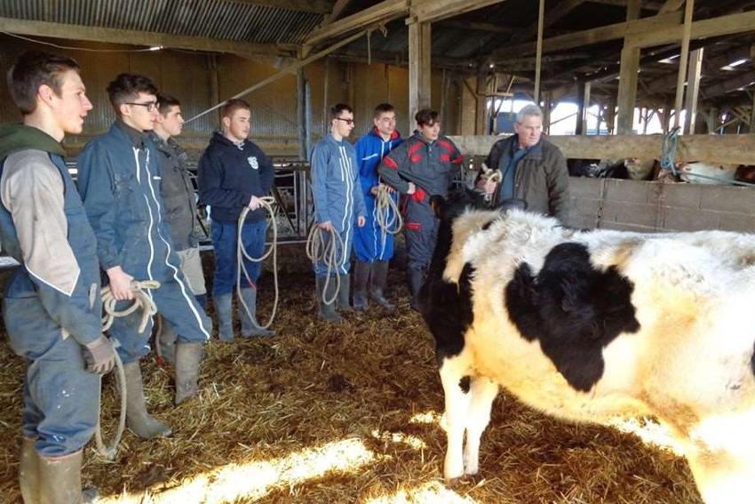 Maillon naturel de la pédagogie agricole : le CFA des Terres de l'Yonne accède à plus de visibilité et d'attractivité…