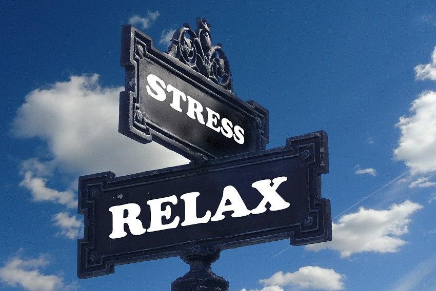 Le stress perturbe les personnes en état de confinement : tout est dans l'assiette !