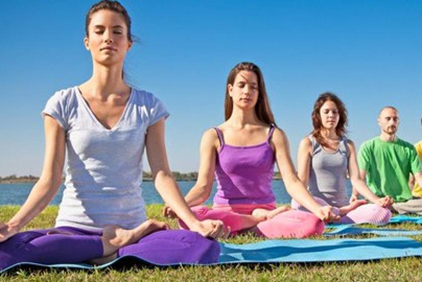 Méditer en Avallonnais : c'est possible avec AMINA !