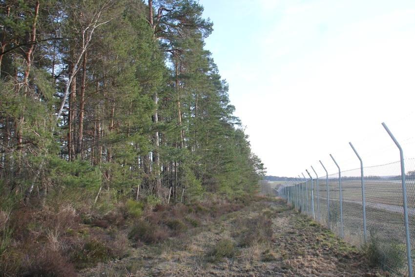 Les arbres sont sauvés : l'aérodrome de Branches n'augmentera pas la capacité de sa piste d'atterrissage