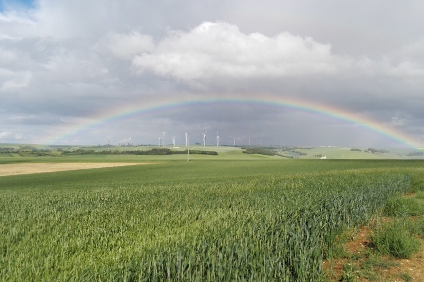 70 millions d'euros en soutien de la filière : la Région veille à la relance agricole grâce aux fonds européens